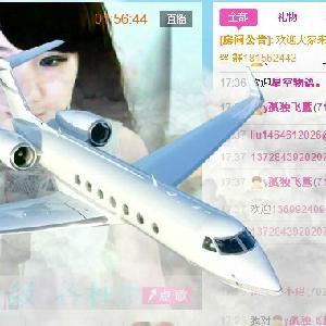飞机 模型 300_300